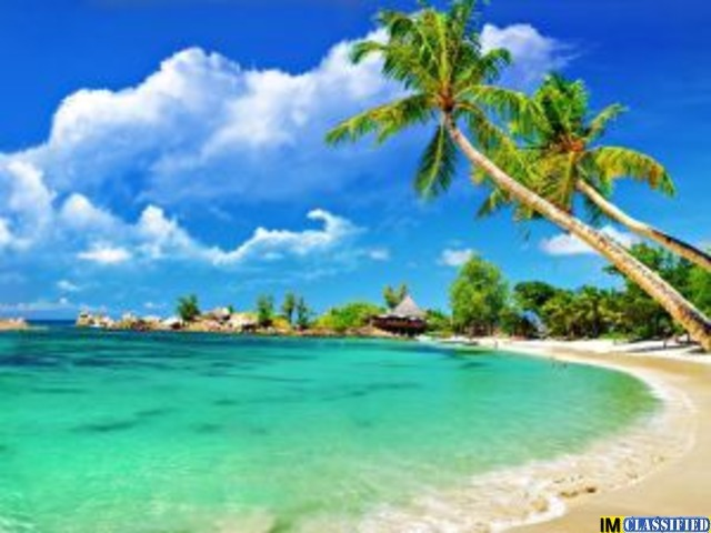 Book Goa Tour Package from Shoes on Loose
