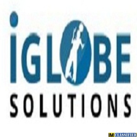 iGlobe Solutions | website design company in jaipur - 1/1