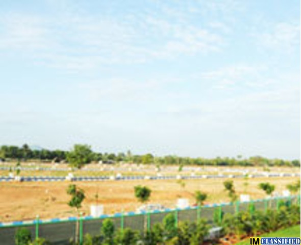 Plots and villa in tindivanam -  Shrishainfra - 1/1